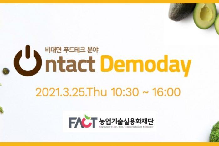 온택트 데모데이 (Ontact Demoday)